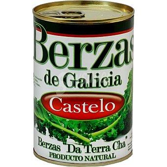 Castelo Grelos gallegos I. G. P Lata 250 g neto escurrido
