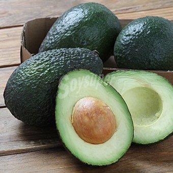 Carrefour Bio Aguacate Bandeja 500 g