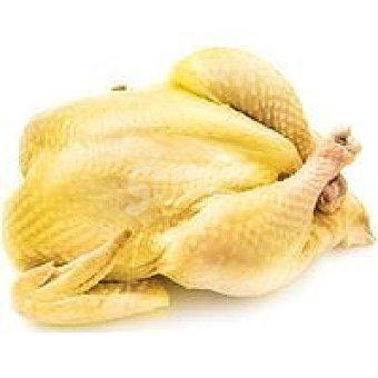 CORRAL Pollo de 1.8 kg