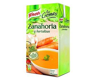 Knorr Crema fina de zanahoria Brik 500ml