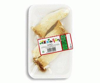 HONGOS Seta de Chopo (pholiota Aegertia) Tarrina de 250 gramos