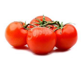 Ibereco Tomate Ensalada Producción Ecológica 600g