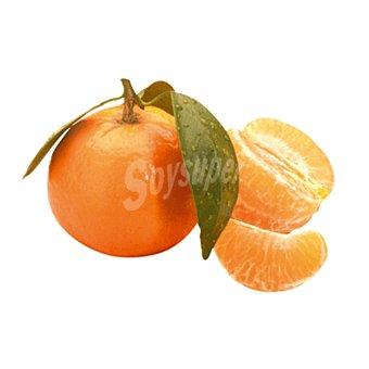 Mandarina unidad (140 gr aprox.)