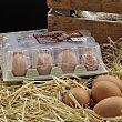 Huevos XL Docena Carrefour