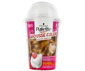 Palette Schwarzkopf Tinte Rubio Claro Dorado Nº8.5 Mousse Color 1u