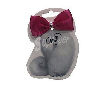 Mascotas Lazo con goma Gidget 2