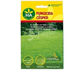 HA-Huerto y Jardín Fungicida césped 100 Gramos