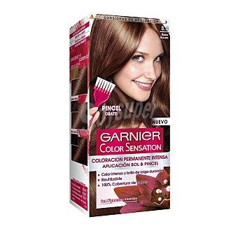 Color Sensation Garnier Tinte rubio oscuro nº 6.0 coloración permanente intensa caja 1 unidad pincel gratis Caja 1 unidad