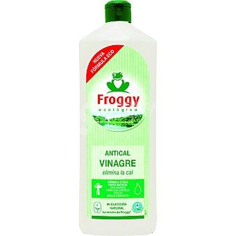 Froggy Limpiador antical ecológico Botella 1 l
