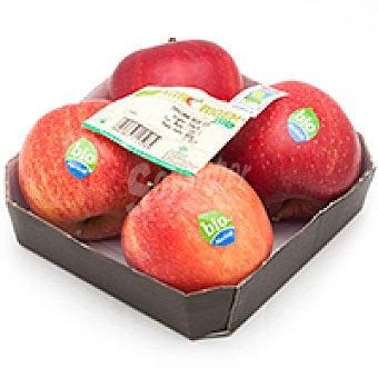 Manzana roja ecológica Bandeja 600 g