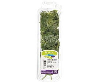 Auchan Hierbabuena 15 gramos