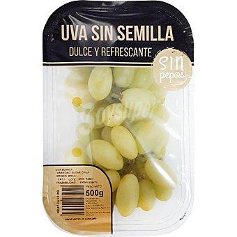 LA VENDIMIA Uva blanca sin semilla Tarrina de 500 g