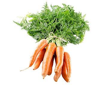 Auchan Producción Controlada Zanahoria tierna Bandeja de 500 Gramos