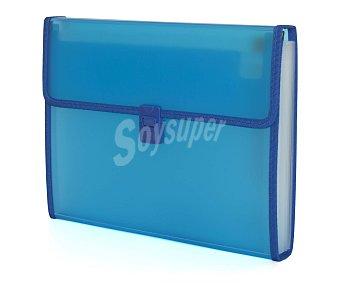 Auchan Carpeta clasificadora de polipropileno azul, de tamaño folio, con fuelle, 12 bolsas separadoras y cierre automático 1 unidad