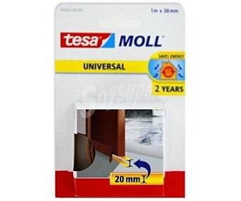 TESA Moll Burlete Umbral Marrón Puertas 1 Unidad