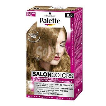 Palette Tinte Salón Colors 8.5 Rubio Claro Dorado 1 ud
