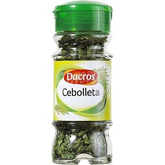 Ducros Cebolleta 2,5 g