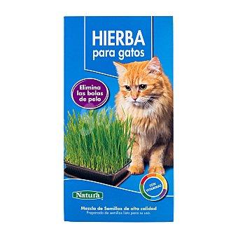 Natura Hierba para gatos (Elimina las bolas de pelo) Caja de 120 g
