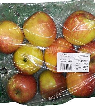 VARIOS Manzana scifresh Paquete 1500 g