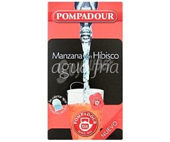 Pompadour Infusión agua fría manzana con hibisco 50 Gramos 20 Unidades