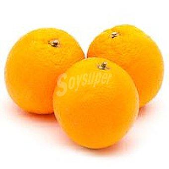 EXTREMADURA Naranja de postre de 1 kg