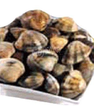 Carrefour Calidad y Origen Almeja Caja de 1 kg