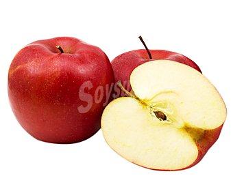 Manzana roja starking bandeja 850 g