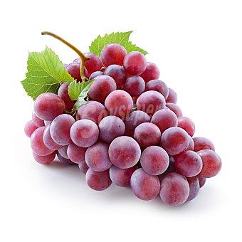 Uva roja sin semilla bandeja 500 gr Bandeja 500 gr