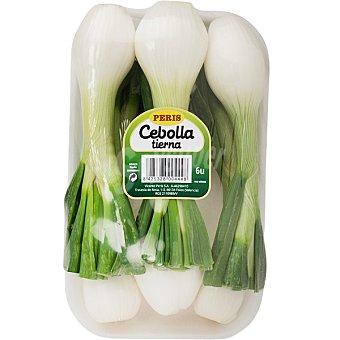 ORO CUIPER Cebolletas tiernas Bandeja 250 g