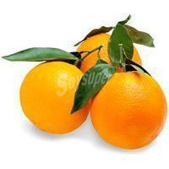 Naranja con hoja de Andalucía 1 kg