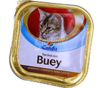 Condis Comida gato buey-pollo 100 GRS